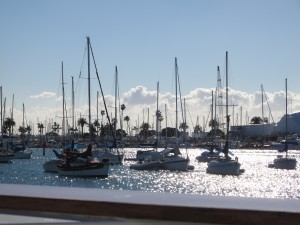 The Harbor in San Diego