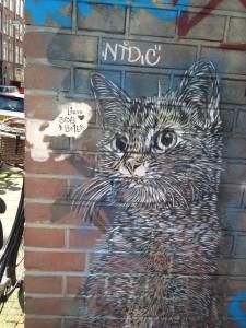 Kitty Grafitti