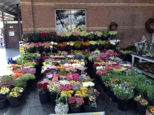 Flower market in Roermond train station